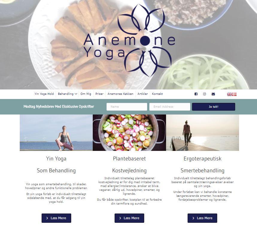 Anemone website http://www.anemoneyoga.dk - Design & Photography Elad Itzkin