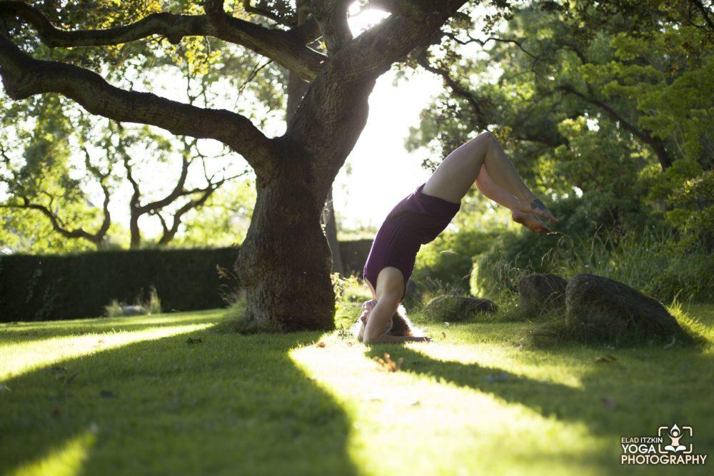 Evaloa Schou Yoga & Dance - Elad Itzkin Yoga Photography - Copenhagen - Denmark 0420