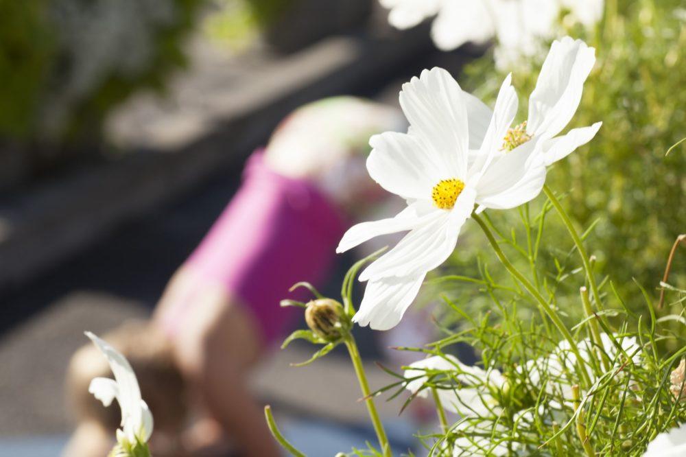 Maeva Fages Yoga - Geneva Switzerland - Elad Itzkin Yoga Photography 0600
